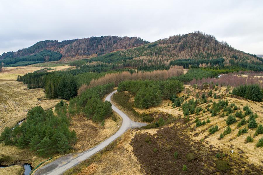 Rural market trends - land Scotland - Davidson Robertson