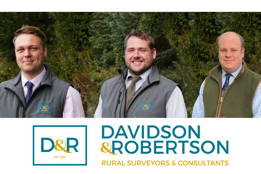 Davidson & Robertson Sales Team